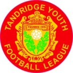 Tandridge Youth League